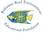 BREEF LOGO2